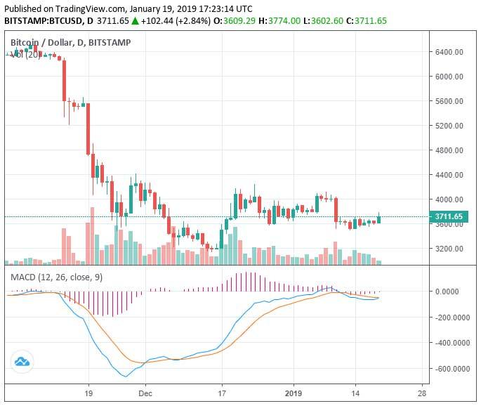 Webitcoin: Pra cima: Bitcoin rompe a marca de US$3700 e mercado avança US$5 bi em capitalização