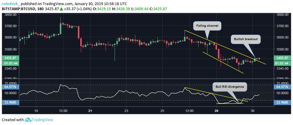 Webitcoin: Bitcoin se recupera, mas ursos continuam inabalados